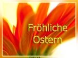 Blumengruss Fröhliche Ostern