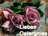 Ostergruss Blumen